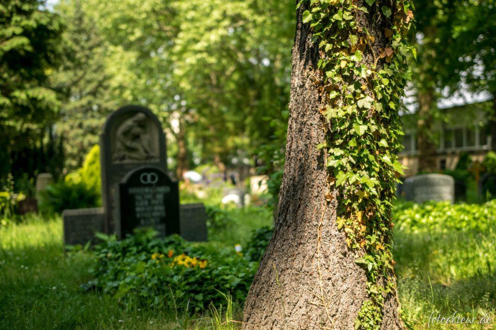 160528_Friedhof_00001