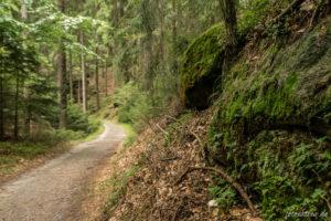 160920_elbsandsteingebirge_00016