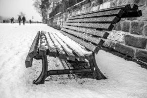 170115_Winter_00002