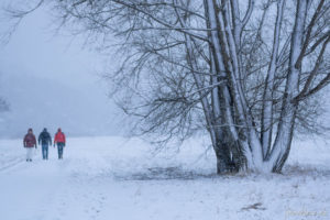 170115_Winter_00005