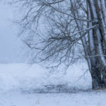 170115_Winter_Titel_00001