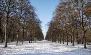 170128_Winter_00024