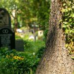 160528_Friedhof_Titel_00001