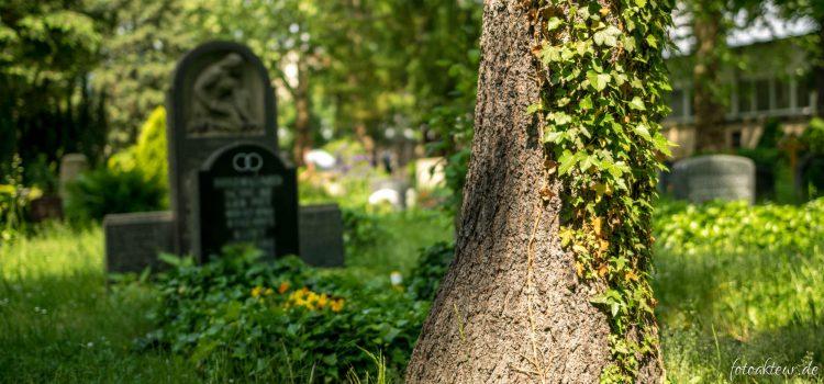 Fotowettbewerb Friedhofswegweiser Dresden – Ausschreibung