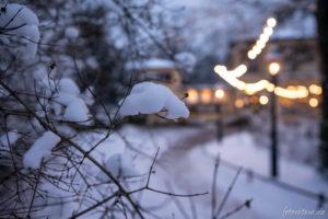 170117_Winter_00015