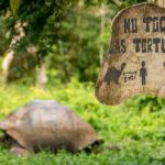 170531_Galapagos_Teil2_Titel_00001