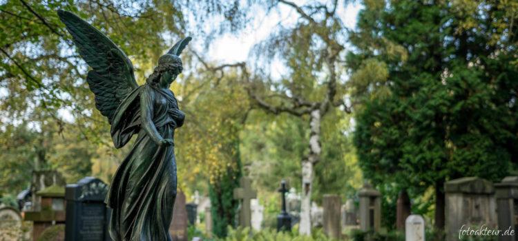 Fotowettbewerb Friedhofswegweiser Dresden – Preisverleihung
