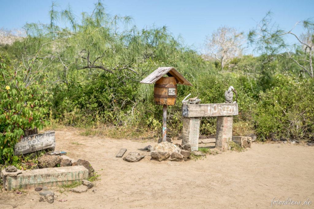 170604_Galapagos_Teil4_00026
