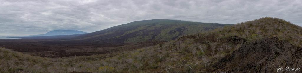 Vulkan Darwin