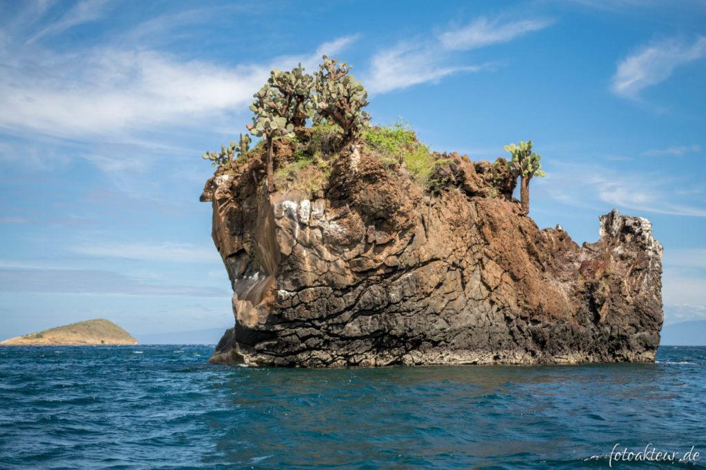 170608_Galapagos_Teil6_00006